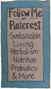 Dryad In The Elm on Pinterest: Sustainability, Natural Living, Herbalism, Nutrition, Probiotics, & More
